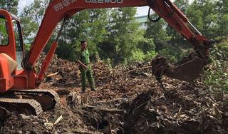 Đổ hàng tấn rác ra môi trường, Công ty Shing Mark đổ thừa cho công nhân