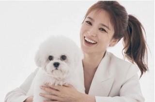 Song Hye Kyo lần đầu lộ diện sau tin đồn Song Joong Ki có tình mới