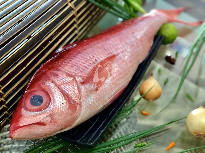 Sau khi ăn cá hồng, 14 người nhập viện khẩn cấp
