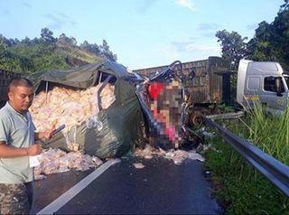 Va chạm với xe đầu kéo trên cao tốc, 2 người tử vong thương tâm