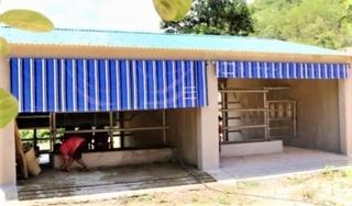 Chuồng bò giá 236 triệu ở Nghệ An có gì đặc biệt?