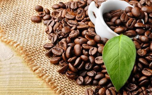 Giá cà phê hôm nay ngày 24/7: Thế giới quay đầu giảm