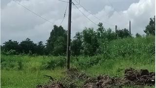 Nam công nhân điện lực bị điện giật tử vong