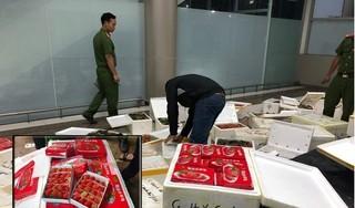 Sốc với kết quả thử nghiệm mẫu dâu tây Trung Quốc được tuồn vào Đà Lạt