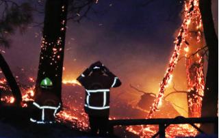 Tin tức thế giới 31/7: Hỏa hoạn thiêu rụi 40 ha rừng thông ở Pháp