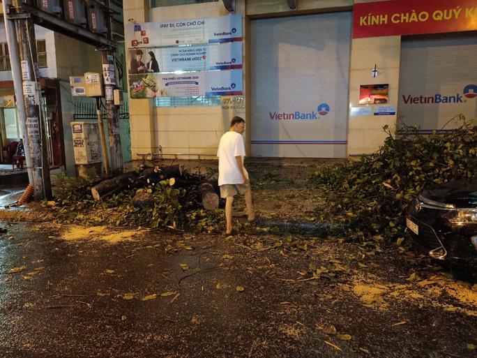 TP HCM mưa lớn, cây cổ thụ đổ đè bẹp xe ô tô và làm nhiều người khác bị thương. ảnh 2