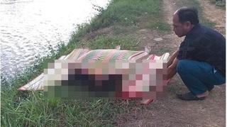 Phát hiện thi thể phụ nữ gần như lõa thể dưới kênh trước UBND xã