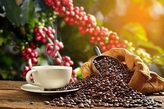 Giá cà phê hôm nay ngày 5/8: Tăng mạnh cả 2 thị trường