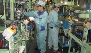 Nhật bắt đầu cấp lại visa cho lao động Việt Nam