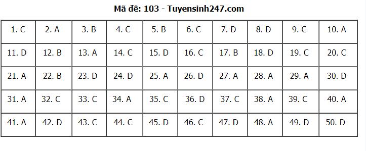 Gợi ý Đáp án đề thi môn Toán Học mã đề 103