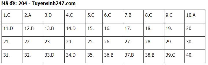 Đáp án đề thi môn Lý mã đề 204 kỳ thi THPT Quốc Gia 2020