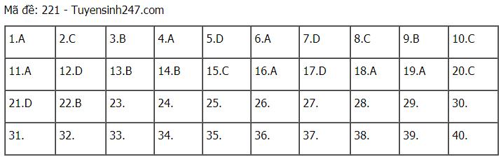 Đáp án đề thi môn Lý mã đề 221 kỳ thi THPT Quốc Gia 20202
