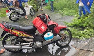TP.HCM: Cây phượng bật gốc đè người đi đường bị thương