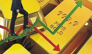 Dự báo giá vàng 14/8: Không có nhiều biến động, vẫn ở trong xu hướng tăng