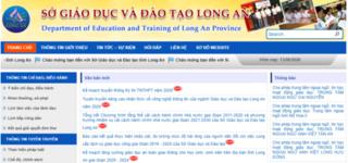 Tra cứu điểm thi THPT quốc gia 2020 tỉnh Long An ở đâu nhanh nhất?