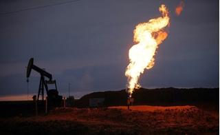 Giá gas hôm nay 18/8: Thời tiết thuận lợi, giá gas tiếp tục tăng