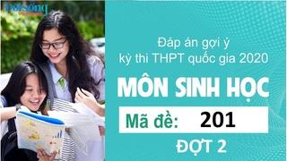 Đáp án đề thi môn Sinh học mã đề 201 kỳ thi THPT Quốc Gia 2020 đợt 2