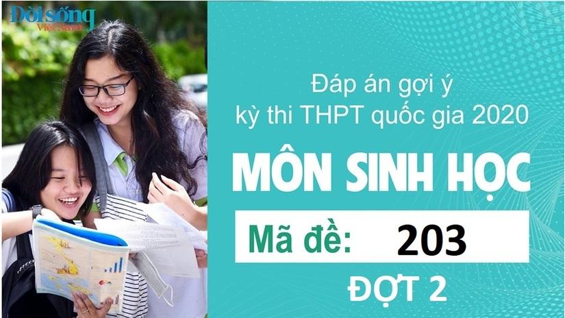 Đáp án đề thi môn Sinh học mã đề 203 kỳ thi THPT Quốc Gia 2020 đợt 2