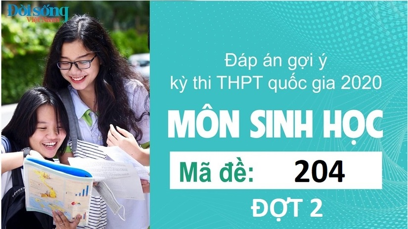 Đáp án đề thi môn Sinh học mã đề 204 kỳ thi THPT Quốc Gia 2020 đợt 2