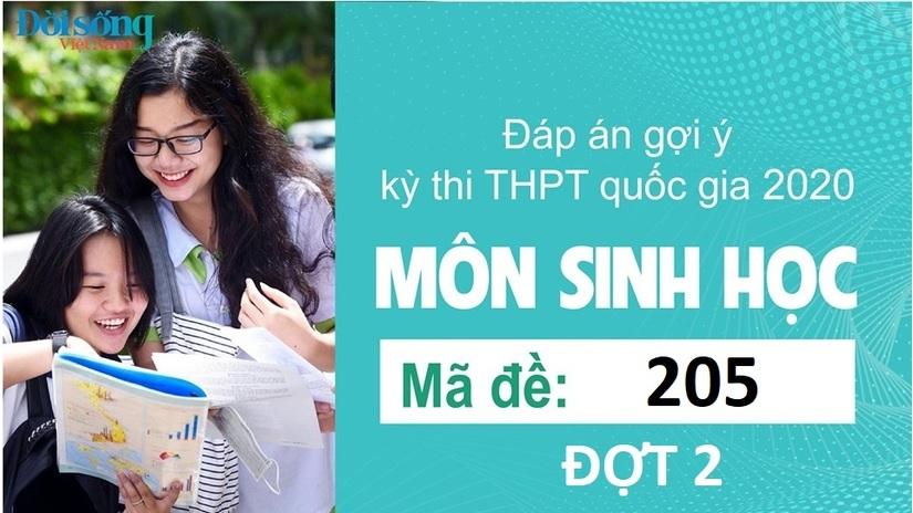 Đáp án đề thi môn Sinh học mã đề 205 kỳ thi THPT Quốc Gia 2020 đợt 2