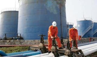 Giá xăng dầu 29/8: Giá dầu tăng trở lại