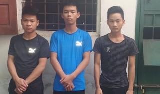 Băng nhóm trộm trâu liên tỉnh từ Nghệ An ra Nam Định