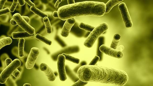 Botulinum có trong sản phẩm pate Minh Chay là chất độc khét tiếng số 1 thế giới