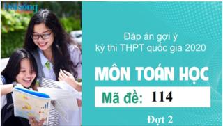 Đáp án đề thi môn Toán Học mã đề 113 kỳ thi THPT Quốc Gia 2020 đợt 2