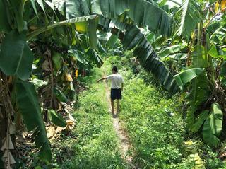Bắt kẻ chặn đường, hiếp dâm bé gái 12 tuổi trong vườn chuối ở Hà Nội