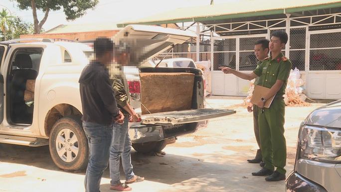 Hai thầy giáo đang chở gỗ lậu thì bị bắt quả tang
