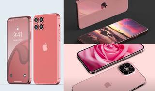 iPhone 12 phiên bản 'xịn' nhất sẽ không được bán ở Việt Nam