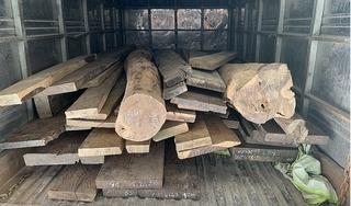 Đồng Tháp: Bắt giữ tài xế ô tô tải nghi chở gỗ nhập lậu