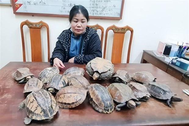 Đối tượng Nguyễn Thị Sen cùng tang vật