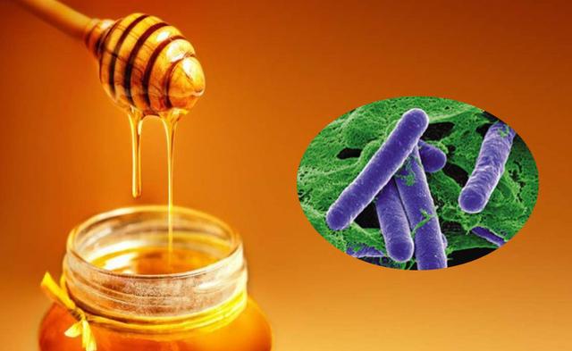 Không nên cho trẻ dưới 1 tuổi ăn mật ong vì có thể gây ngộ độc