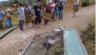 Tin tức pháp luật ngày 7/9: Sập cổng trường mầm non, 3 cháu bé tử vong