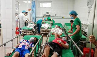 16 học sinh tiểu học phải nhập viện cấp cứu do bị ong đốt