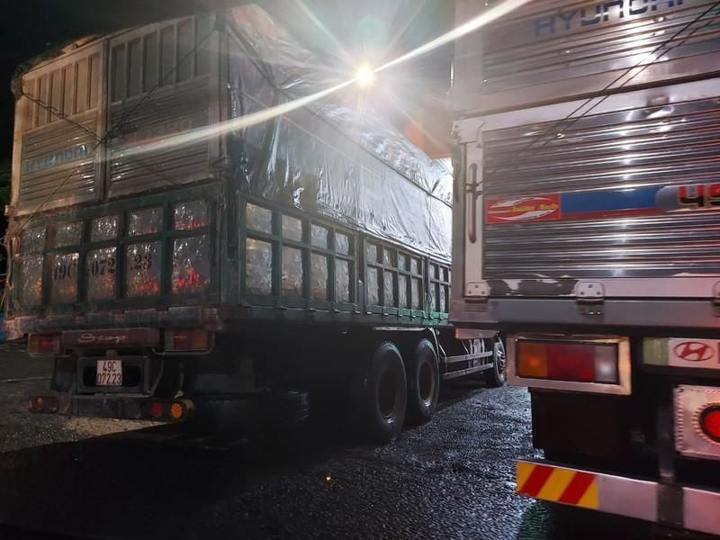Công an Đồng Nai ra quân bắt trọn đoàn xe tải chở cát 'khủng'