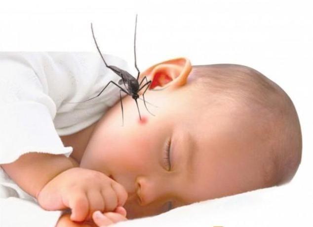 sốt xuất huyết ở trẻ nhỏ