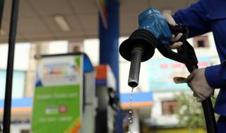 Giá xăng dầu 11/9: Giá dầu giảm trở lại