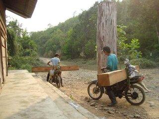 Người đàn ông chở gỗ lậu bị gỗ đè tử vong