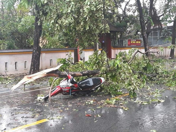 Những thiệt hại đầu tiên của cơn bão số 5