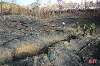 Xử phạt người đàn ông gây cháy 620 m² rừng cao su ở Hà Tĩnh