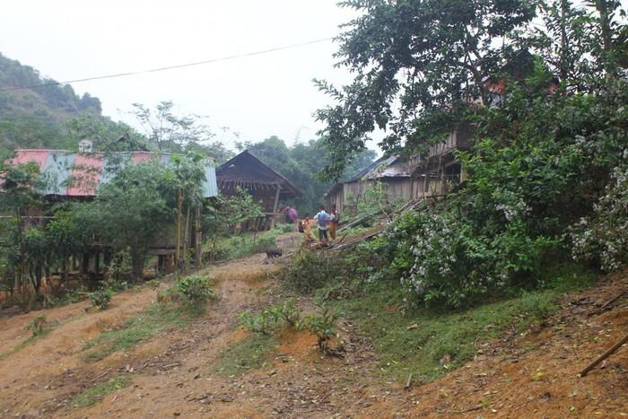 Nghi phạm truy sát hai mẹ con thương vong rồi trốn vào rừng ăn lá ngón tự tử