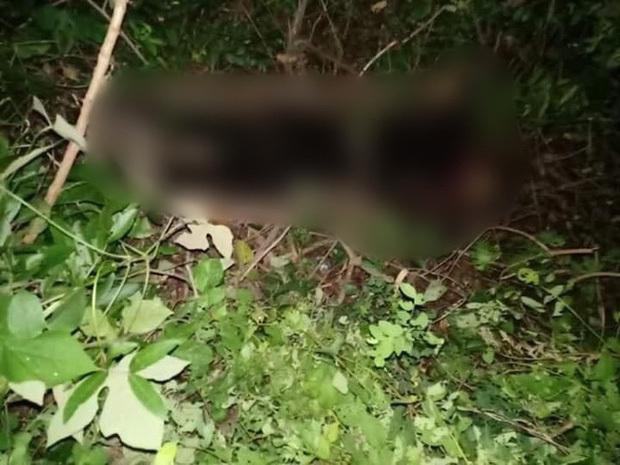 Phát hiện thi thể nữ nghi là giáo viên mất tích trong rừng