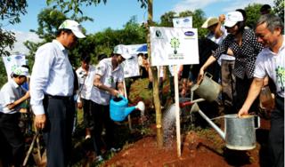 Gần 320.000 cây giống được Vinamilk trao tặng cho người dân để làm kinh tế và trồng rừng