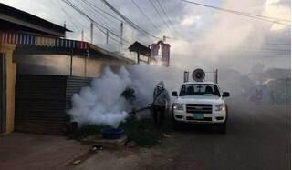 Campuchia cảnh báo sốt Chikungunya bùng phát tại khu vực giáp ranh Việt Nam