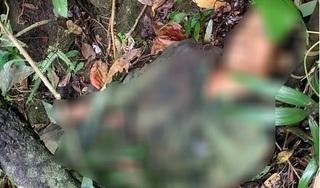 Súng cướp cò khi đi săn thú, thanh niên khiến bạn trúng đạn tử vong