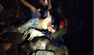 Chở nhiều xác chó, người đàn ông bị đánh bất tỉnh