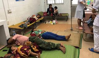 Hái nấm ở bìa rừng về ăn, 7 người trong gia đình phải nhập viện cấp cứu