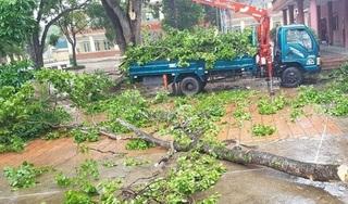 Các trường ở Thanh Hóa sẽ cho học sinh nghỉ nếu có tình huống nguy hiểm
